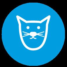 Turno para esterilización de gatos