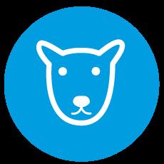 Turno para esterilización de perros