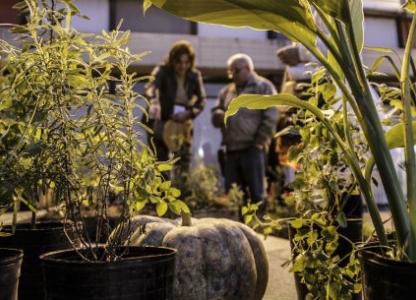 Semana de la Agroecología en las Ciudades