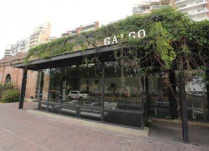 bar Complejo casa del tango