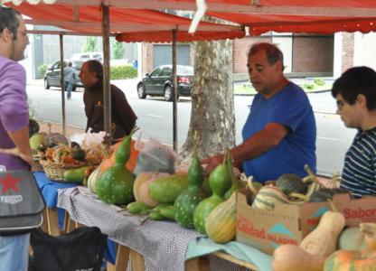 Feria Ecológica en Distrito Sur