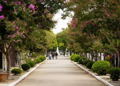 Paseo sobre Historias de amor, en el Cementerio La Piedad