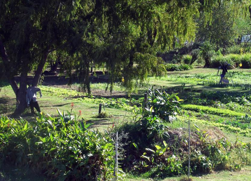 Parque huerta molino Blanco