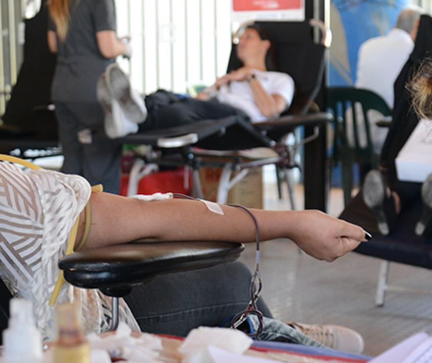 Jornadas de donación de sangre