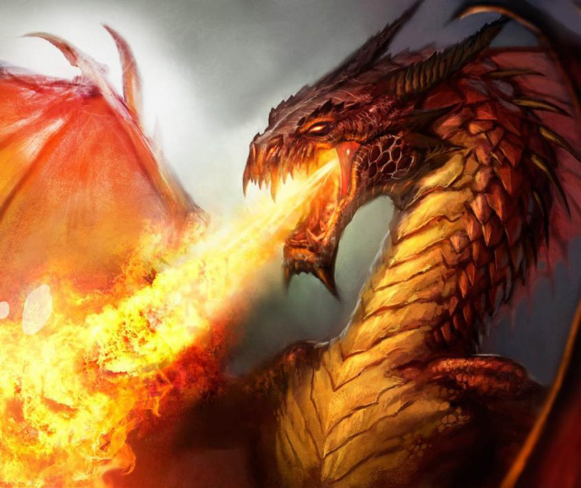 Función de La orden del dragón