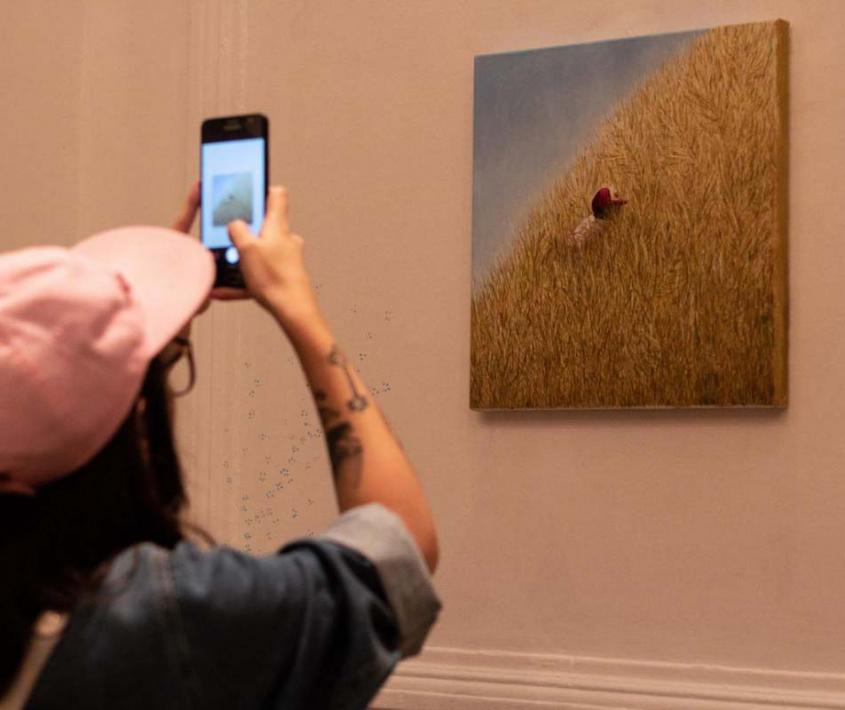 Muestras del Programa de exposiciones para artistas y curadores