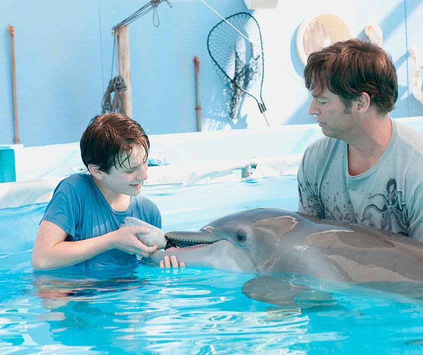 Proyección de Winter, el delfín