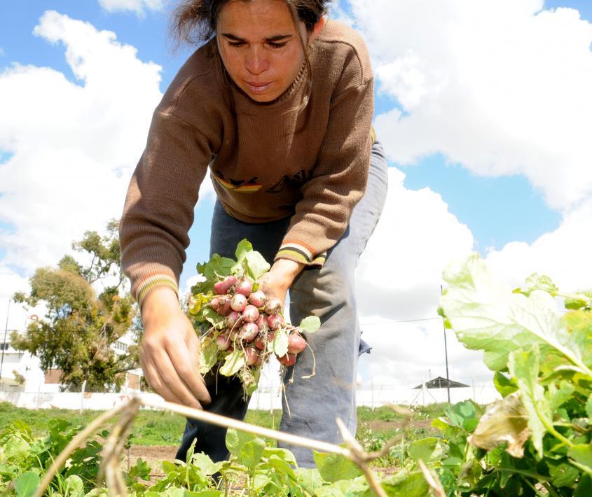 Semana de la Agricultura Urbana