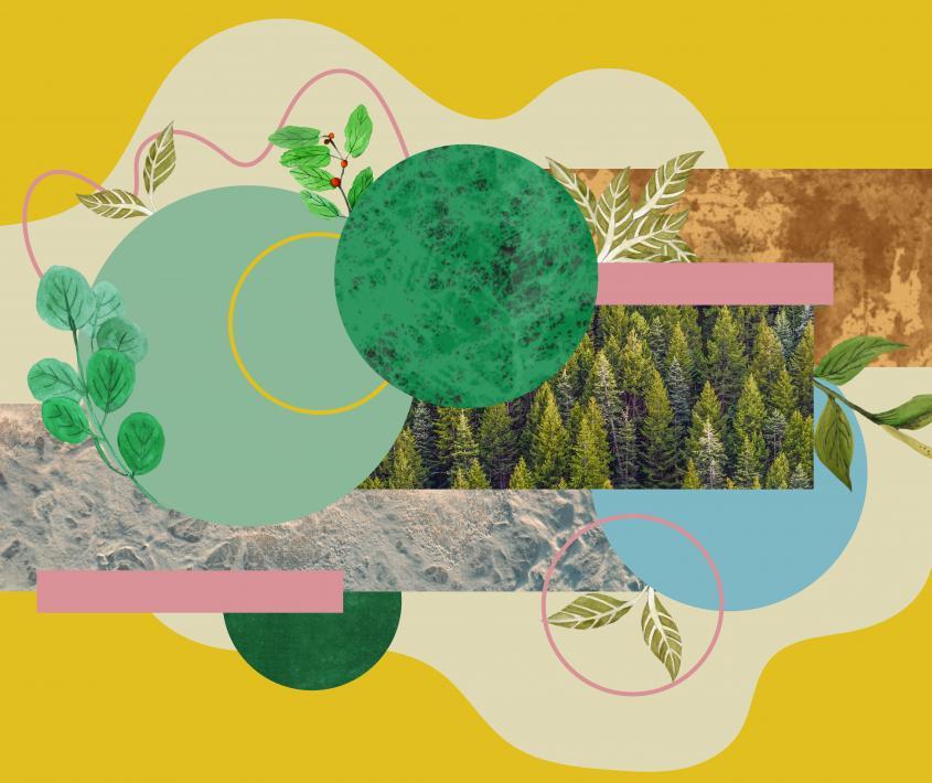Vitales. Arte, naturaleza y cultura digital
