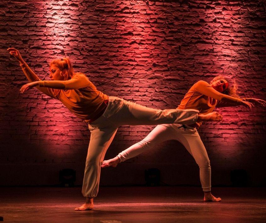 Festival Danza en Red III