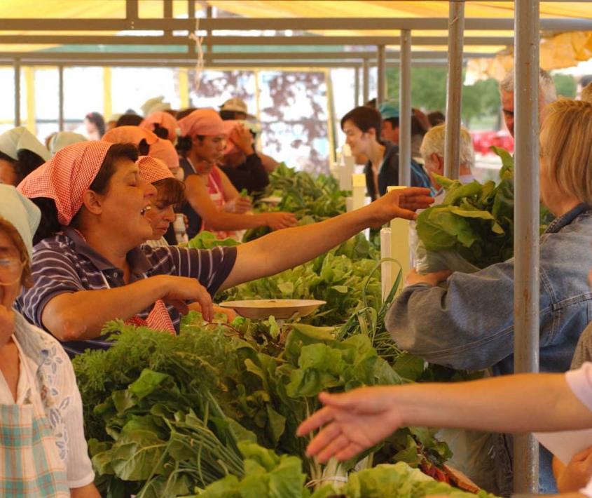 Feria ecológica en Parque Norte