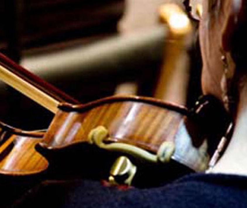 Organismos Estables / Artes Musicales en vivo