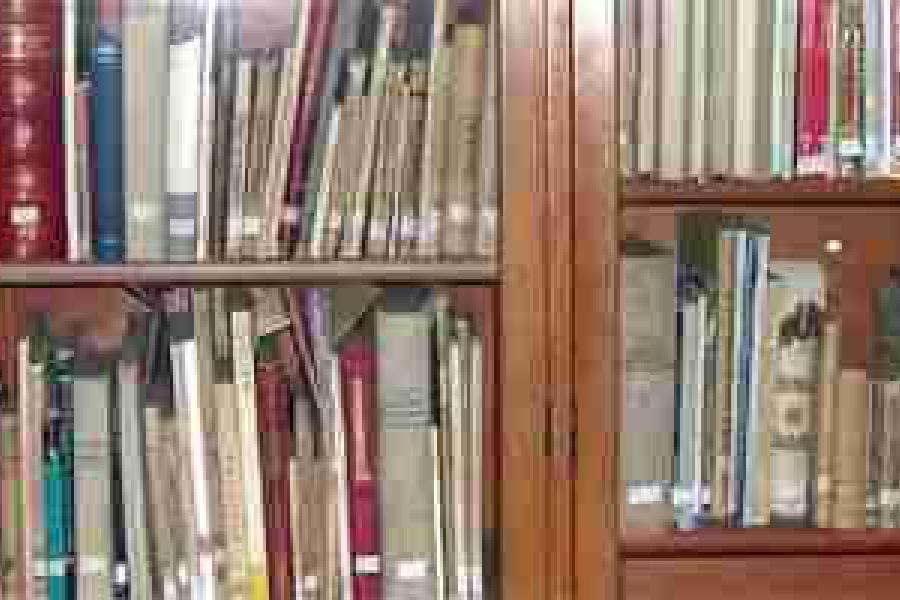 Biblioteca del Castagnino