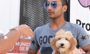 movil mascotas