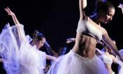 Escuela de Danzas