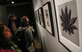 Exposición_de_arte_con_público