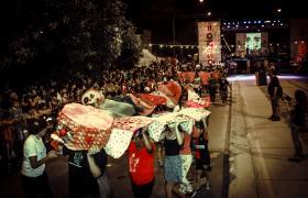 muestra de instituciones en carnaval