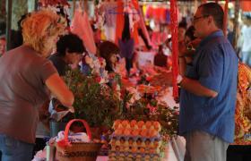 Feria ecológica