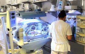 registro-medico-especialista-en-ginecologia-y-obstetricia