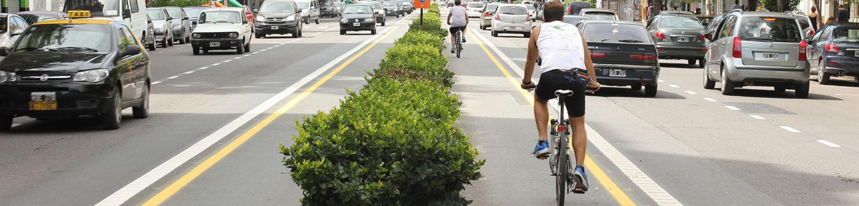 Bicicletas en la ciclovía de Av. Pellegrini