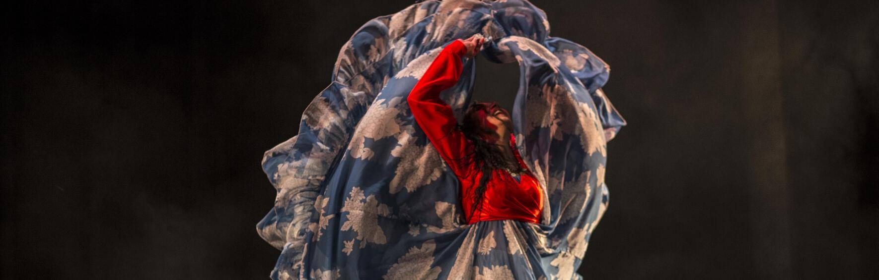 Festival Danza en Red